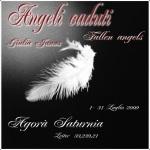 Angeli Caduti, di Giulia Janus