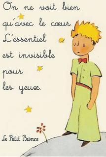 Le Petit Prince (AntoineDeSaintExupery)